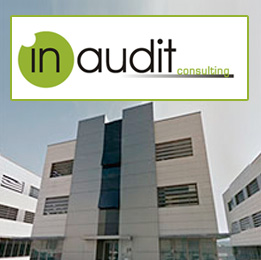 In Audit Consulting