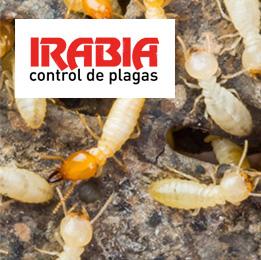 Irabia Plagas