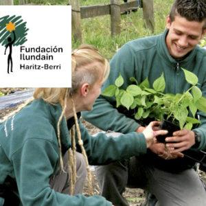 Fundación Ilundain «Haritz Berri»